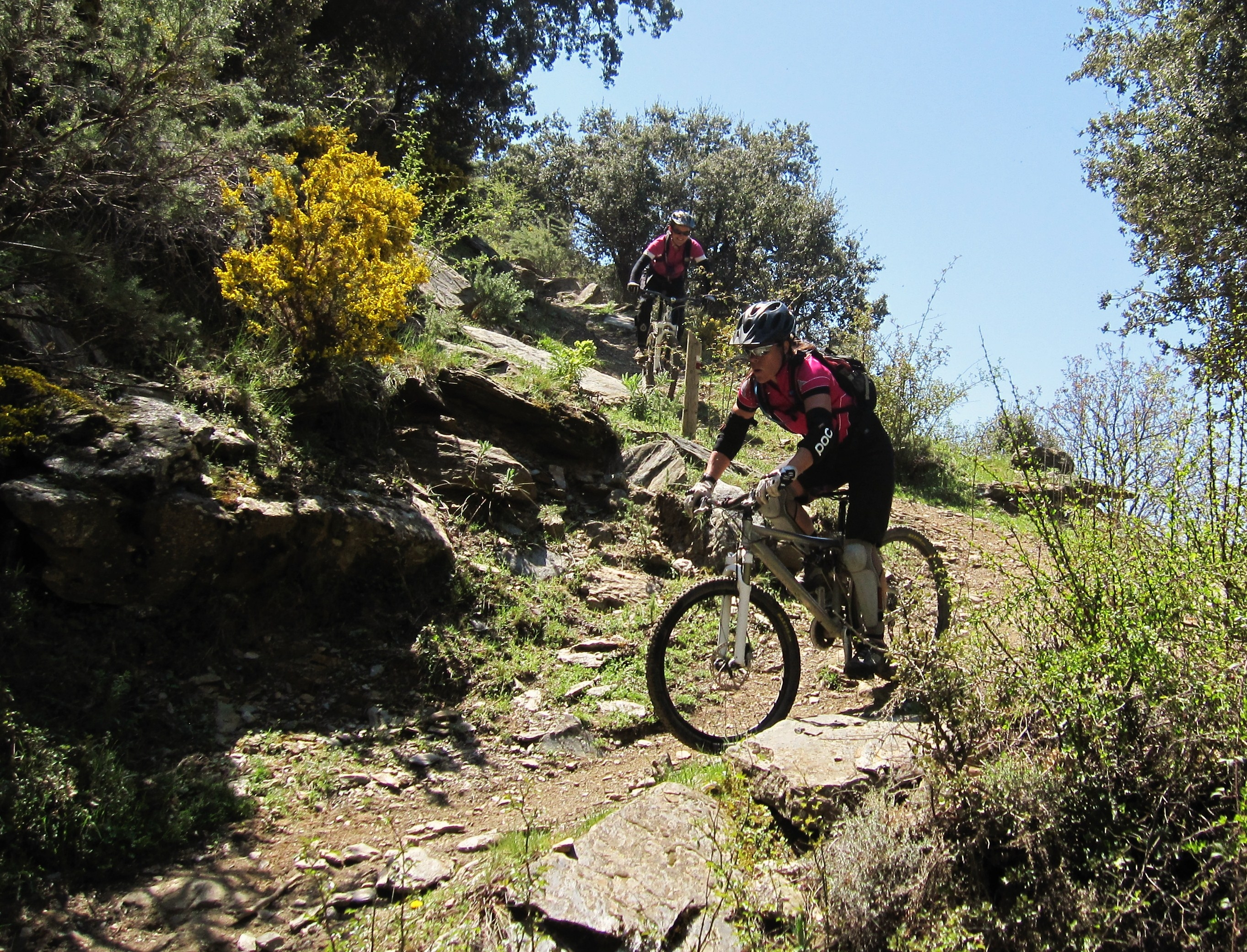 Sunny trails at Pure Mountains