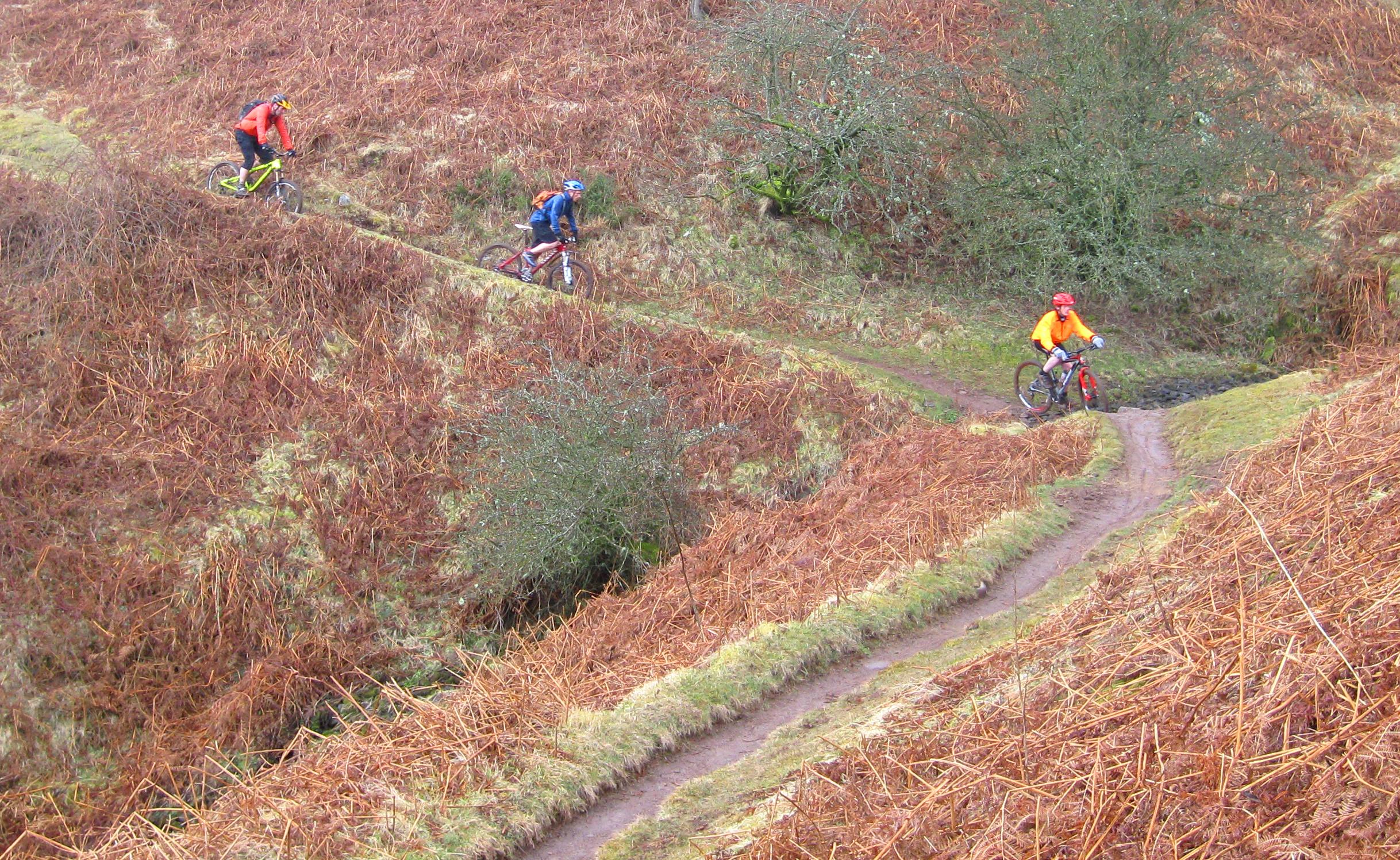 singletrack around Mynydd Llangorse