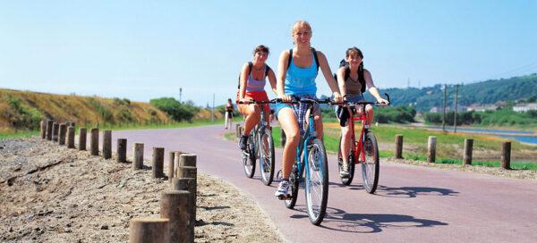 cycling holidays wales image