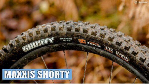 maxxis shorty