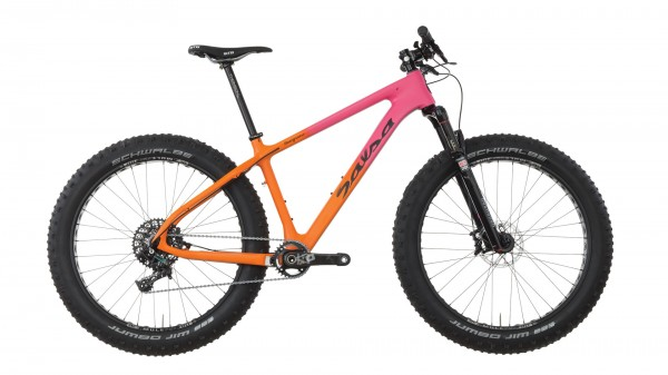salsa beargrase carbon